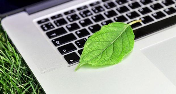 Green, Nature, Computer.